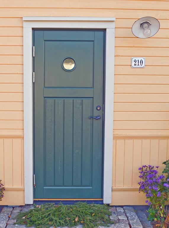 Ytterdörr special panel runtfönster_redigerad-1